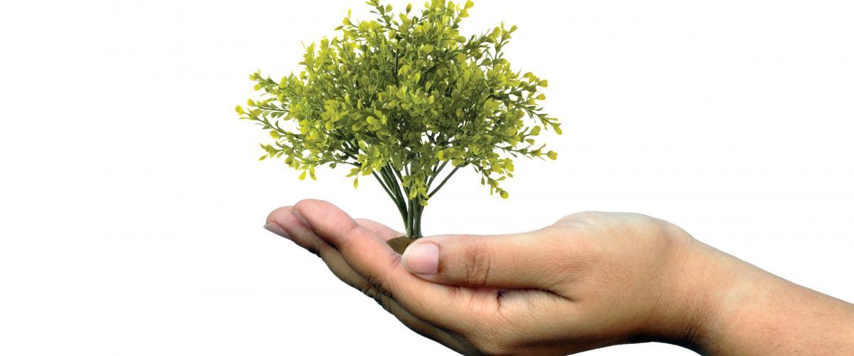 Umweltorientiertes Handeln ist ein zentraler Bestandteil der Unternehmenspolitik von Friedrich Friedrich